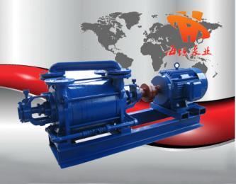 2SK系列两级水环式真空泵厂家