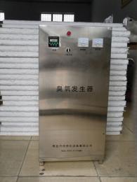 DJ-50G白山臭氧消毒機