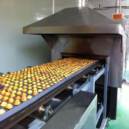 HSJ供應焙烤隧道爐,隧道式餅干、蛋糕焙烤爐,燃氣爐,電烤爐