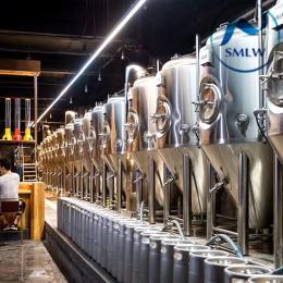 300L鮮釀啤酒設備