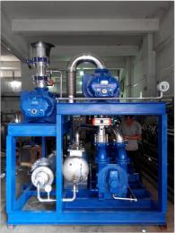 2BW540-OH2化工NASH真空泵 全不锈钢佶缔纳士真空机组 用于化工、医药生产