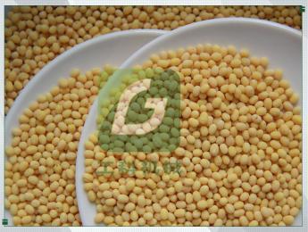 6FT-PB8小型豌豆脫皮機干法豌豆去皮