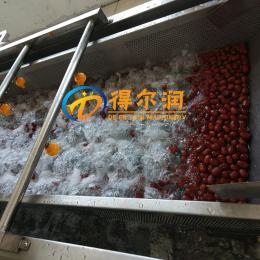 DER——5000型全自動小油菜清洗機器
