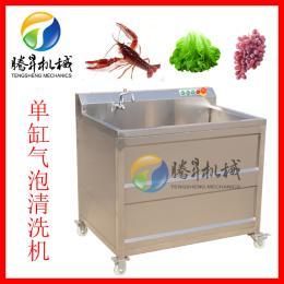 TS-AZ 蔬菜清洗機水果蔬菜氣泡清洗機 全自動臭氧消毒洗菜機