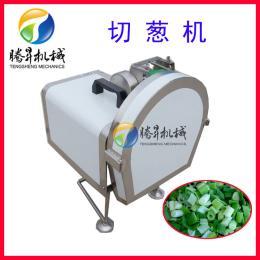 切葱机 腾昇机械 多功能小型切菜机