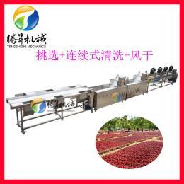 定制厂家直销净菜加工设备 蔬菜清洗风干生产线