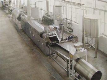 YWDZ-5000薯片生产油炸流水线