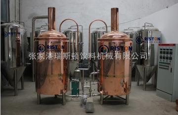 DGP-12/6瑞斯顿玻璃瓶饮料灌装机