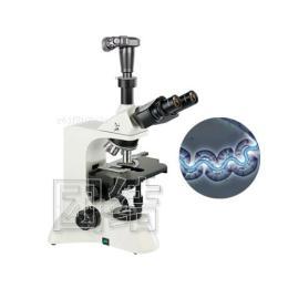 电脑型相衬显微镜