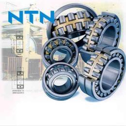 NTN进口轴承