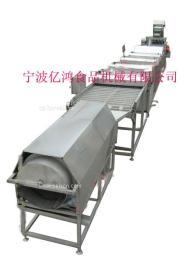 黄(白)桃罐头生产线