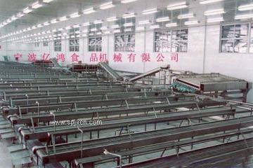 供应桔子罐头生产线
