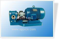 厂家供应2CY系列齿轮泵