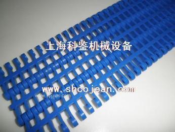 塑料輸送網鏈