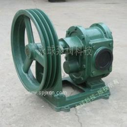 BP皮带轮齿轮泵 齿轮泵