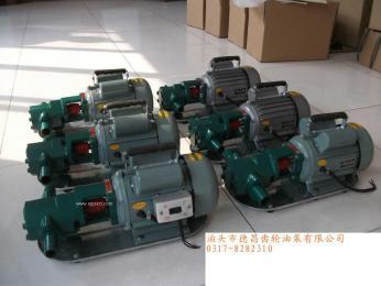 WCB齿轮泵 WCB微型齿轮泵 WCB手提齿轮泵 WCB?#36739;?#30005;齿轮泵