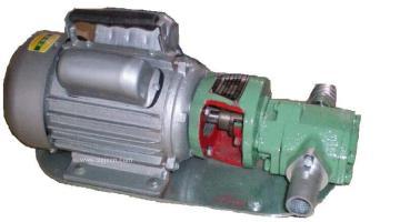 WCB-30手提式齿轮泵 齿轮油泵厂家