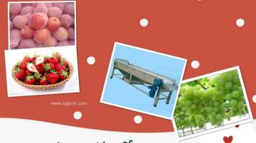 苹果草莓葡萄优质选果机制造商联系鑫华轻工机械吧