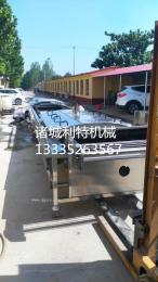 蔬菜預煮機、預煮生產線、預煮設備、預煮機