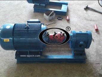 厂价批发 KCB-33.3型不锈钢齿轮泵 齿轮油泵
