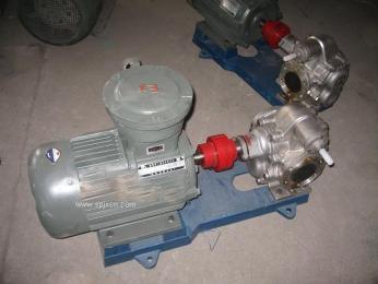 KCB-300 泊大江 不锈钢齿轮泵 防爆泵现货供应