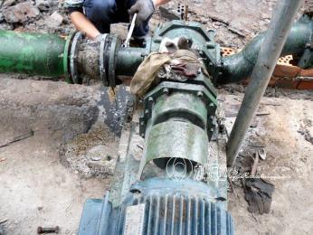 壓濾機配套旋轉活塞泵-濃漿污泥泵