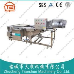 果蔬气泡清洗机(优质生产厂家) 产品图片