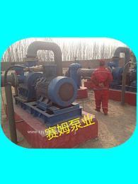 SN440R42U12.1W2電廠能源行業專用三螺桿泵組