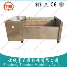 马铃薯去皮清洗机,生产加工流水线 产品图片