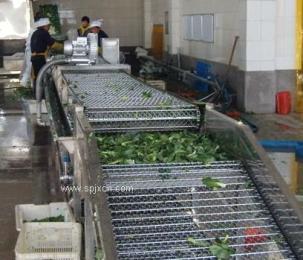 供应韭菜全自动喷淋清洗机   果蔬气泡清洗设备