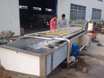 绿叶蔬菜清洗机厂家