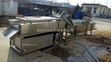 喷淋式大姜清洗设备