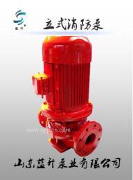 销售济南蓝升牌XBD37KW消火栓泵