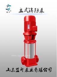 日照專業生產XBD消防恒壓切線泵