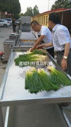 韭菜清洗机、芹菜清洗机、香菜清洗机