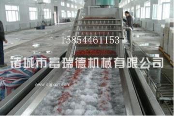富瑞德大枣加工生产流水线