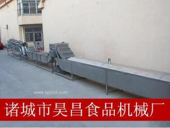 供应昊昌PT-3000型漂烫杀青机果蔬处理设备