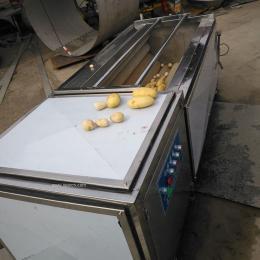 红薯清洗脱皮机 胡萝卜清洗去皮机