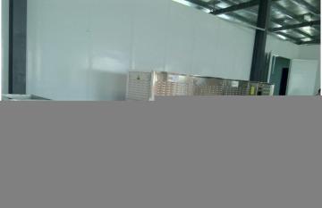 济南希朗猪皮微波膨化设备 高端设备
