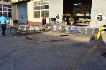 水产品漂烫冷却生产线
