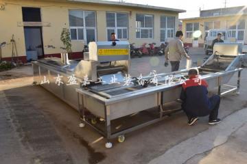 盈嘉全自动大虾漂烫冷却生产线