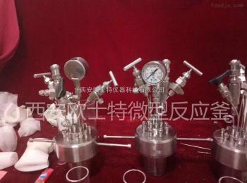 OST平行高温高压反应釜|西安欧士特反应器