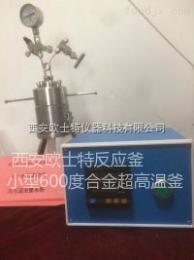 OST微型高压反应釜