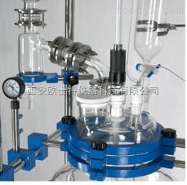 OATK-10L双层玻璃反应釜