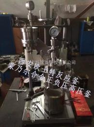 OST-100ml小型高温高压反应釜