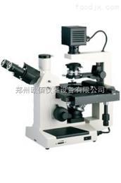 37XE倒置生物显微镜