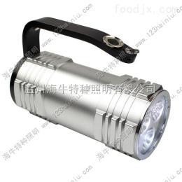 RJW7100 手提式防爆探照灯RJW7100价格,RJW7100厂家