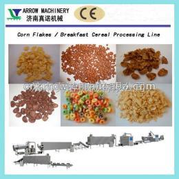 lt65中國山東濟南玉米片設備
