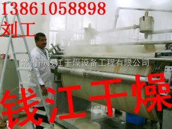 錢江生產_滾筒刮板干燥設備