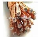 ZR-BPYJVP 0.6/1KV變頻器專用電纜(天津銷售)